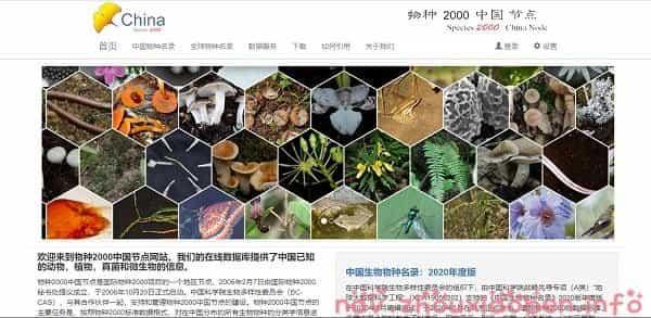物种2000中国节点的截图