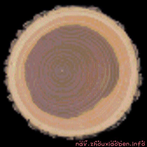 木材数据库的logo